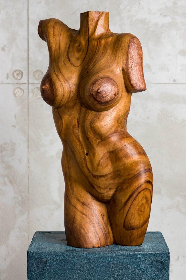 Woman torso big